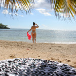 dominica-republic-beach-bikini-palm-tree