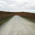 winer-upstate-new-york-catskills