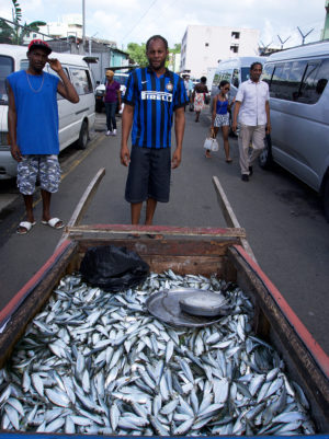 fish-seller-local-market-saint-lucia