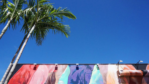wynwood-walls-palm-tres-color-detail