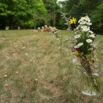 diy-backyard-garden-party-wedding-34